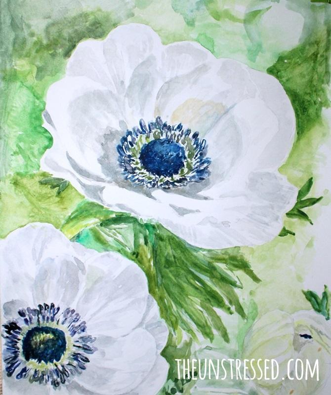 anemone-katrinacenteno